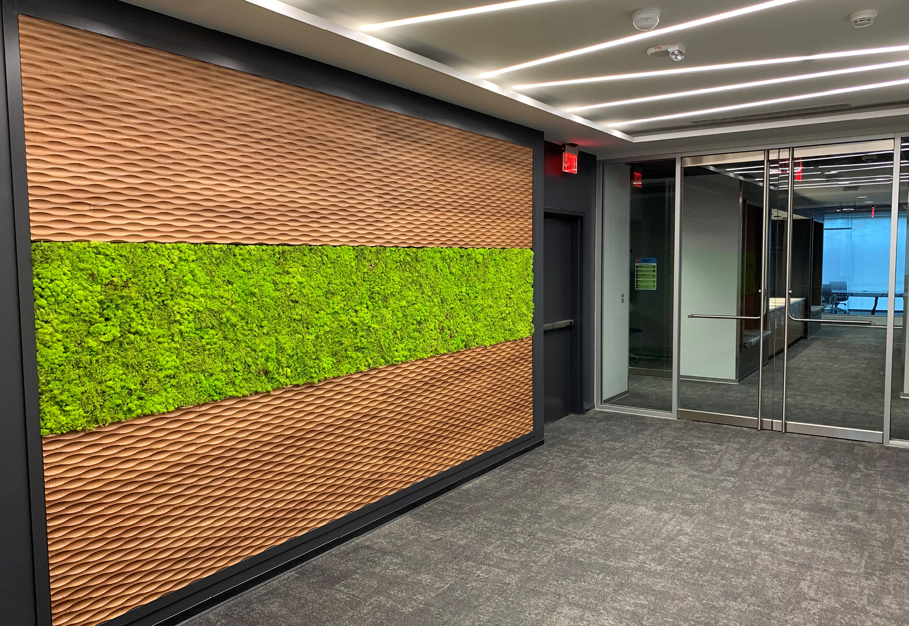 Raleigh Pharmaceutical Company Fitout